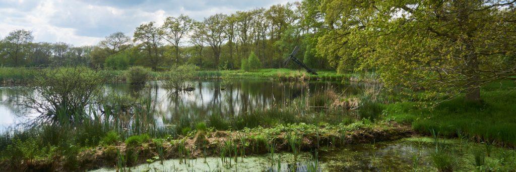 De tjaskers van Zeijen | 11 km