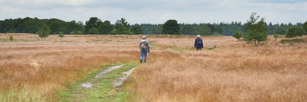 Groene Wissel Odoorn | 14 km