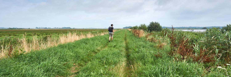 Noordlaarderbos en Oostpolder | 11 km